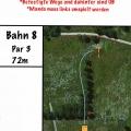 Bahn8